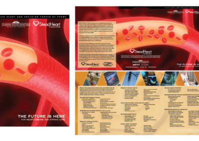 Stead Services Brochure Visual